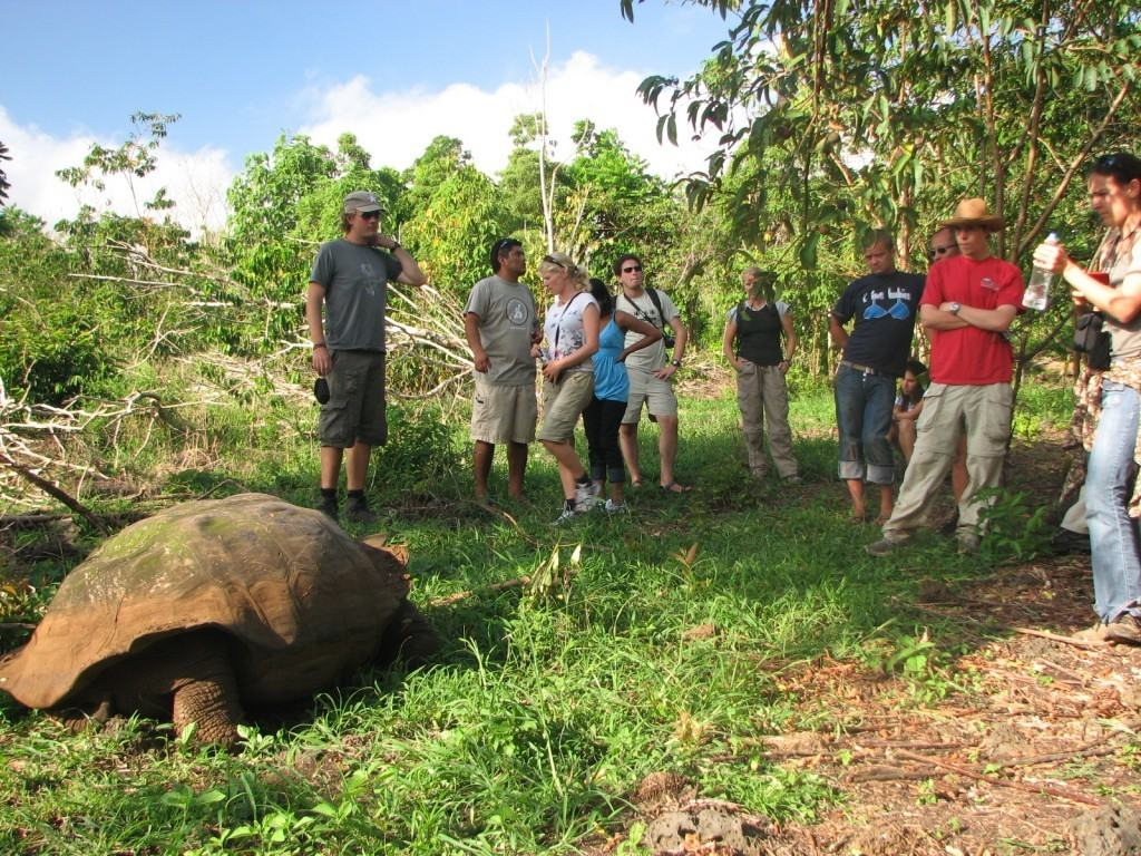galapagos-tour-affordable-travel